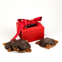 Turtle 3-Pack