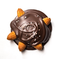 Turtle - Almonds & Dark Chocolate *VEGAN*