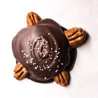 Turtle - Pecans & Dark Chocolate *VEGAN*